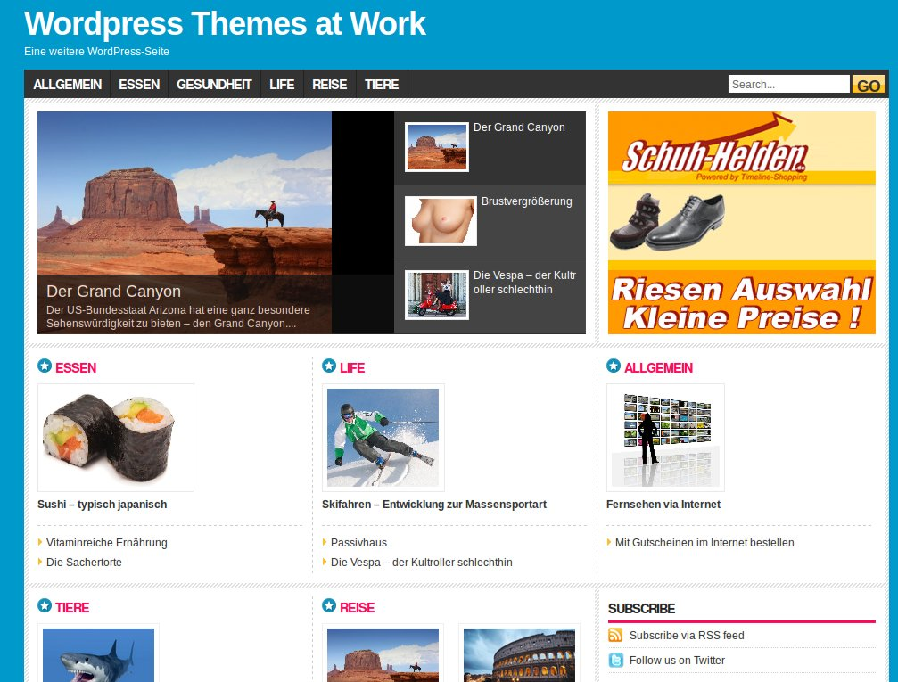 WordPress Theme Fashionpro